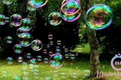 misterybubbles_00113