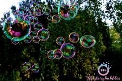 misterybubbles_00114